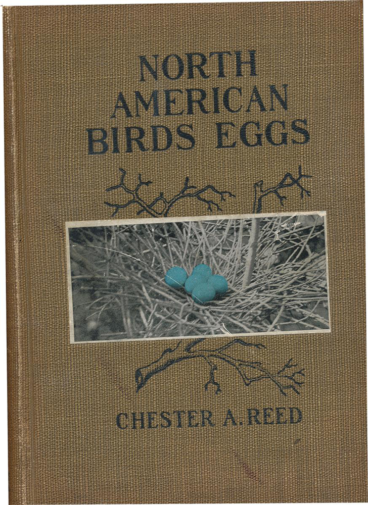NABird-Egg-Cover-page
